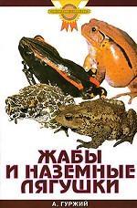 Жабы и наземные лягушки