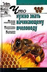 Что нужно знать начинающему пчеловоду