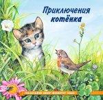 Приключения котенка