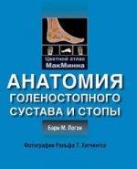 Анатомия голенностопного сустава и стопы. Цветной атлас МакМинна