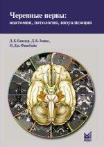 Черепные нервы: анатомия, патология, визуализация
