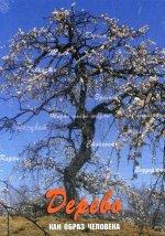 Дерево как образ человека (Жесткая коробка)