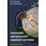 Анатомия центральной нервной системы 5-е изд