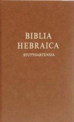 Biblia Herbaica Stuttgartensia