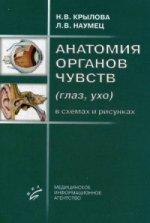 Анатомия органов чувств (глаз, ухо). В схемах и рисунках. Учебное пособие. Гриф УМО по медицинскому образованию