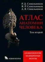 Атлас анатомии человека т2