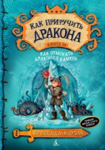 Как отыскать Драконий Камень. Книга 10