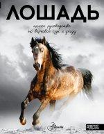 Лошадь.Полное руководство по верховой езде и уходу