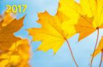 """""""Осенняя фантазия"""". Настенный трехблочный квартальный календарь с курсором в индивидуальной упаковке (Европакет)"""