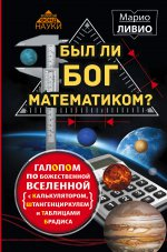 Был ли Бог математиком? Галопом по божественной