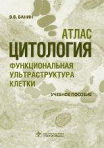Цитология. Функциональная ультраструктура клетки