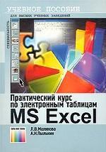 Практический курс по электронным таблицам MS Excel. Учебное пособие для ВУЗов. 2-е издание