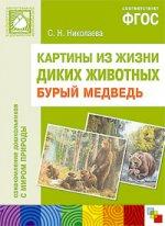 Картины из жизни диких животных. Бурый медведь. ФГОС
