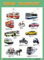 Urban Transport (Городской транспорт)
