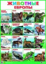 Животные Европы