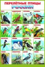 Перелетные птицы Росии