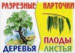 Разрезные карточки: Деревья, плоды, листья