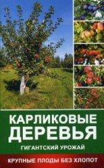 Карликовые деревья - гигантский урожай. Крупные плоды без хлопот