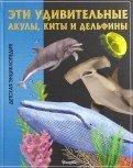 Эти удивительные акулы, киты и дельфины