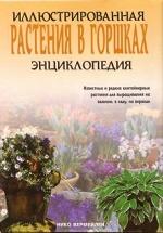 Иллюстрированная энциклопедия/Растения в горшках