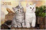 """""""Два котёнка"""". Настенный трехблочный квартальный календарь на 2018 год с курсором в индивидуальной упаковке (Европакет)"""