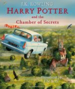Harry Potter & the Chamber of Secrets- illustrated