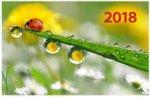 """""""После дождя"""". Настенный трехблочный квартальный календарь на 2018 год с курсором в индивидуальной упаковке (Европакет)"""