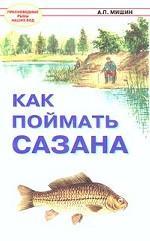 Как поймать сазана