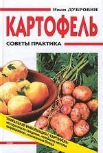 Картофель. Советы практика
