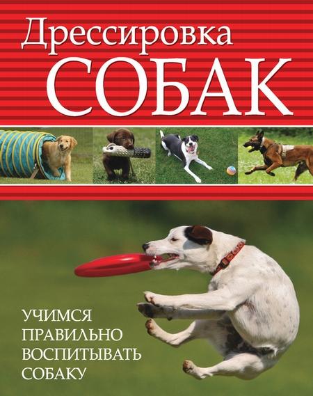 Дрессировка собак. Учимся правильно воспитывать собаку