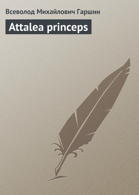 Attalea princeps