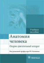 Анатомия человека. Опорно-двигательный аппарат
