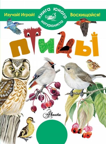 справочник в картинках птицы увидите