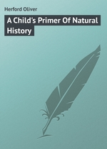 A Child`s Primer Of Natural History