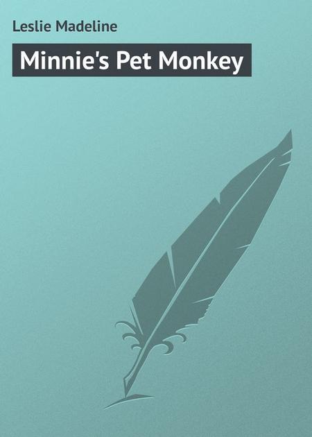 Minnie`s Pet Monkey