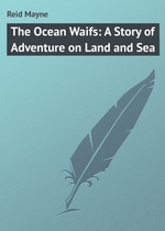 The Ocean Waifs: A Story of Adventure on Land and Sea