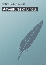 Adventures of Bindle