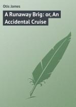 A Runaway Brig: or, An Accidental Cruise
