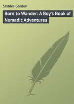 Born to Wander: A Boy`s Book of Nomadic Adventures