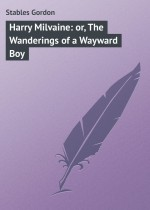 Harry Milvaine: or, The Wanderings of a Wayward Boy