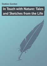 In Touch with Nature: Tales and Sketches from the Life