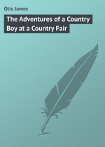 The Adventures of a Country Boy at a Country Fair