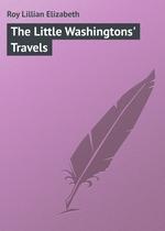 The Little Washingtons` Travels