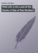 Wild Life in the Land of the Giants: A Tale of Two Brothers