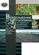 Возделывание голубики на торфяных выработках Припятского Полесья