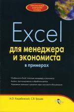 Excel для менеджера и экономиста в примерах