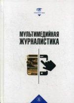 А. М. Файн. Мультимедийная журналистика