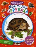 """Моя милая черепаха + 59 наклеек внутри. Серия """"Мой первый учебник ответственности"""""""