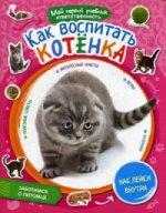 Как воспитать котенка + наклейки внутри.  Мой первый учебник ответственности