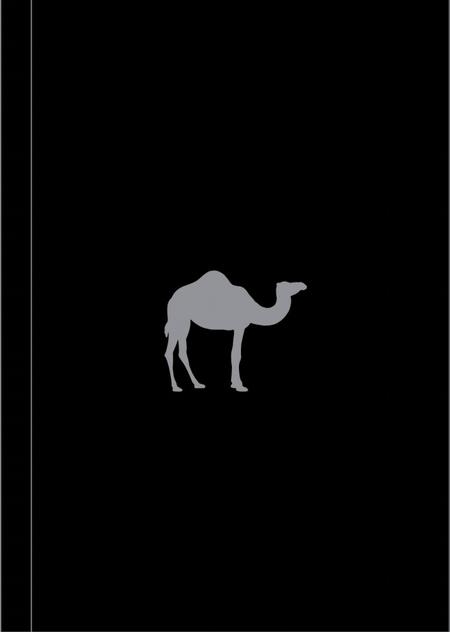 Boy``s Toys (Camel Note)